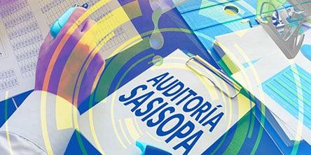 curso-auditoria-sasisopa-444px